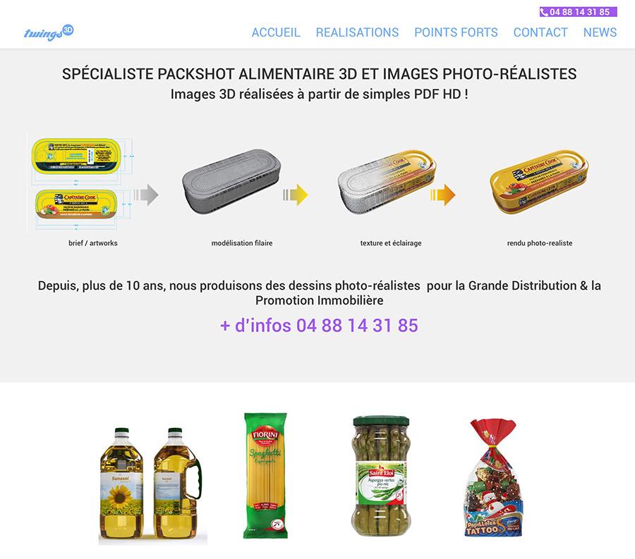 Webdesign, refont graphique du site twings